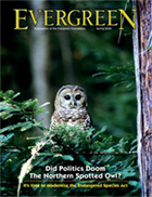 Cover of Spring 2006 Issue of Evergreen Magazine